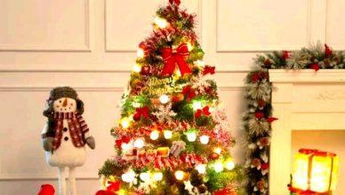 Ditjen Binmas Kristen Kemenag R.I, Terbitkan Imbauan Perayaan Natal dengan Berbagai Persyaratan